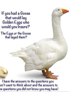Gary_goose_IPF_2.png