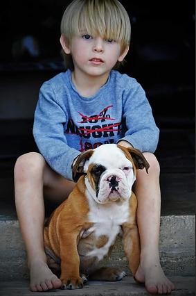 bexar bulldogges son and pup