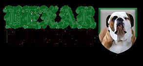 bexar Bulldogges_logo.png