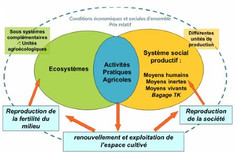 Analyse-Diagnostic de l'agriculture dans le Canton de Massat dans les Pyrénées Ariégeoises