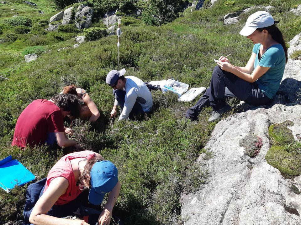 Plisuers personnes font des relevés de terrain en montagne
