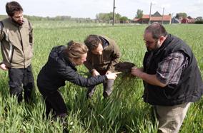 Service écosytémiques et agroécologie: une approche socio-écologique