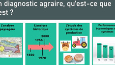Les dynamiques agraires en lien avec la production de ressources florales pour l'apiculture