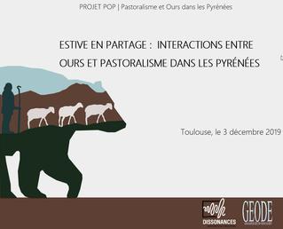 Ours et pastoralisme dans les Pyrénées: Vers une géographie des relations humain/nature