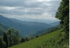 Perceptions des politiques publiques en lien avec le changement climatique dans les Pyrénées