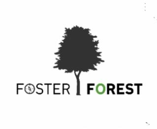 Foster Forest, un jeu sérieux pour s(t)imuler l'adaptation aux changements climatiques en forêt