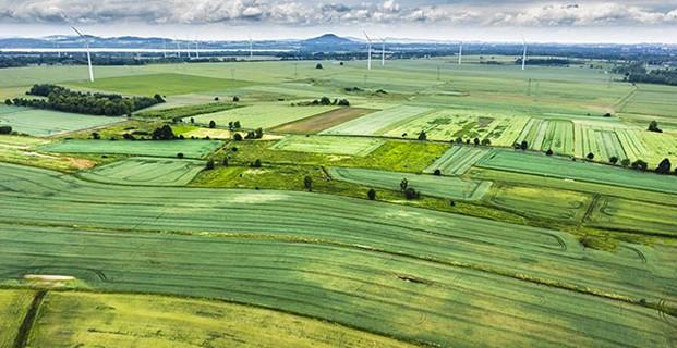 paysage de plaine comportant des éoliennes