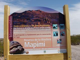 "De la ""zona del silencio"" à la ""reserva de biosfera de Mapimi"" : rencontre avec"