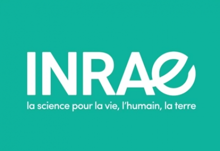 Un logo pour une nouvelle ambition, portée par l'INRAE