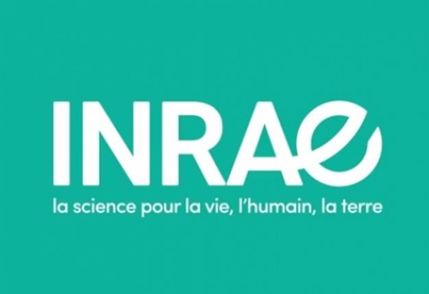 """Résultat de recherche d'images pour """"INRAE"""""""