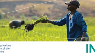 Webinaire Mainstreaming Biodiversity-Sensitive Agriculture for Sustainable Food Systems