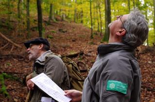Formation - Facteurs clés de conservation de la biodiversité forestière