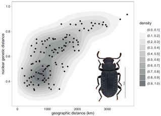 Un nouvel article est paru dans Biological Journal of the Linnean Society