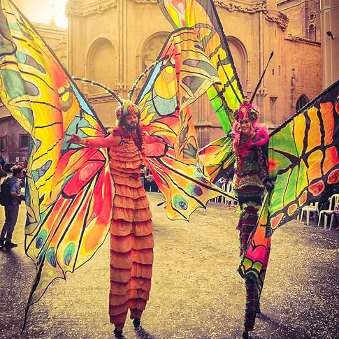 Schmetterlinge-6.jpg