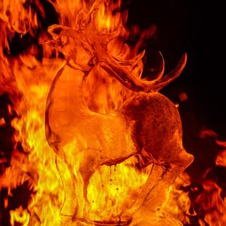 Feuershow Icefire