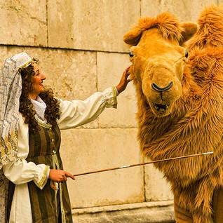 Das Kamel aus 1001 Nacht