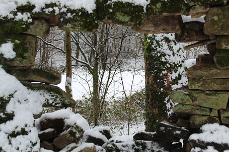 Rosa Brierley Peep into a winter wonderl