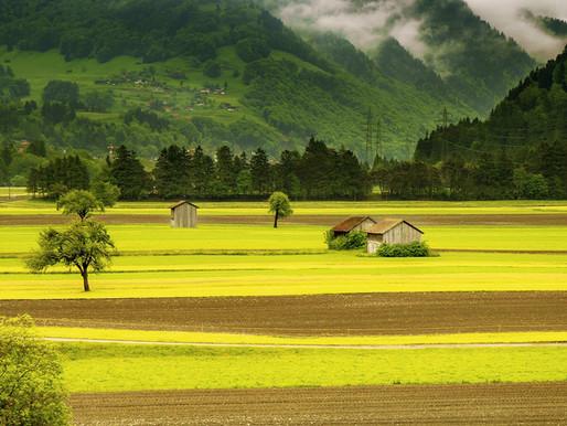 על קרקעות חקלאיות וחלומות של אתמול