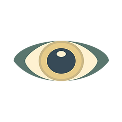 Eye_Plan de travail 1.png