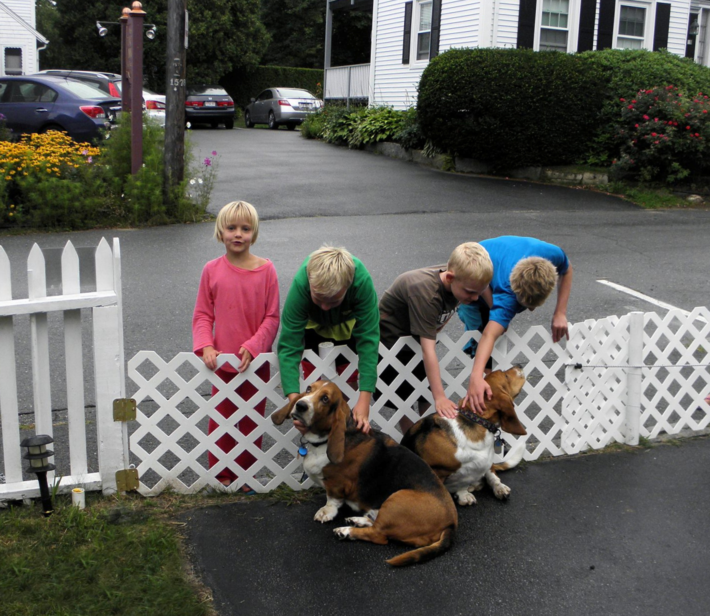 Neighborhood kids with Bassets