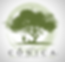 logo CONICA.png