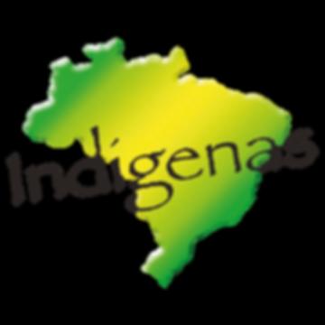 logo site indigenas.png