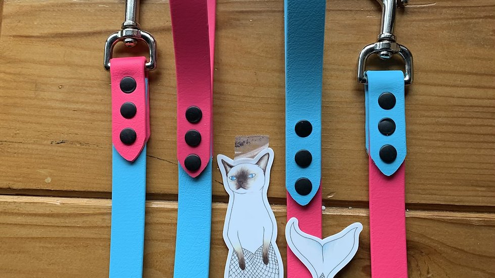 Create your own Two-Tone Leash
