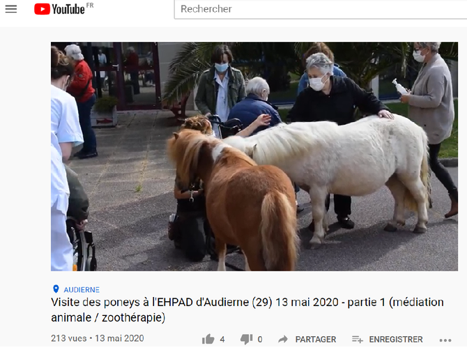 Les Poneys à l'EHPAD en Vidéos