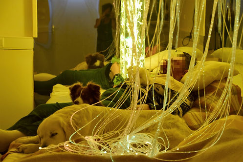 SNOEZELEN et médiation animale - zoothérapie