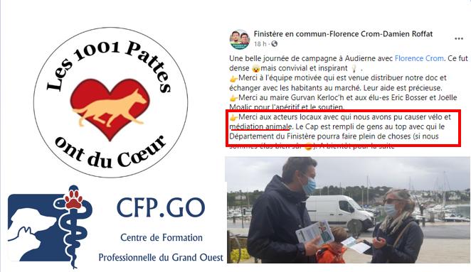 Médiation Animale - Elections départementales