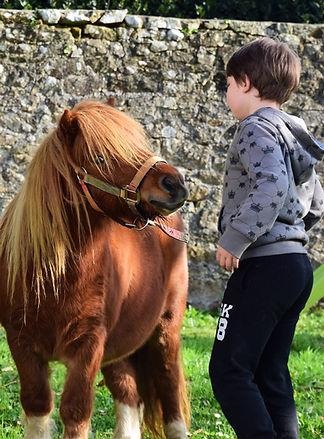 séance avec le cheval