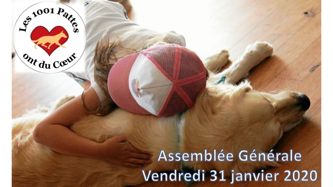 """Compte rendu AG 2020 """"Les 1001 Pattes ont du Coeur"""""""