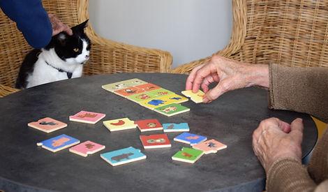 chat en médiation animale