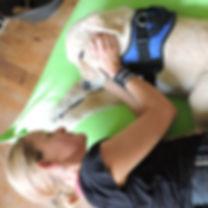 éducation chien médiateur, médiatio animale, zoothérapie