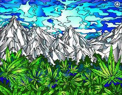 Weed Fields