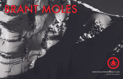 LP Brant Moles touring poster