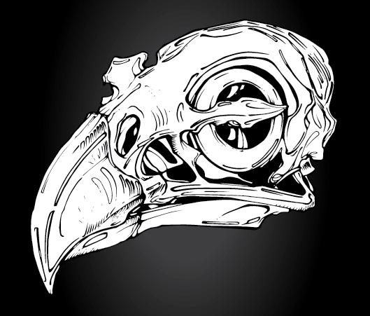 Raptor Skull