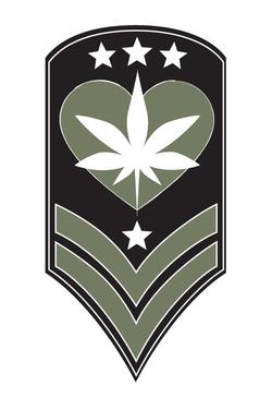 HEALING ARMY