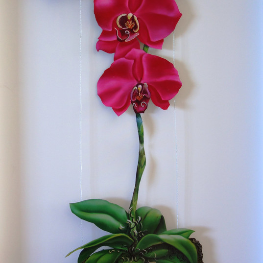 Orchids on cable system 31x13 inches