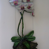 Orchids on cable system