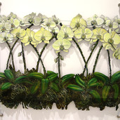 Yellow orchids on cable system