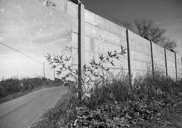 Andrea Alkalay Borders2 Photography 50x7