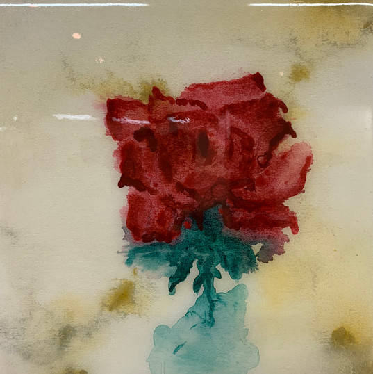 Marble Roses Serie