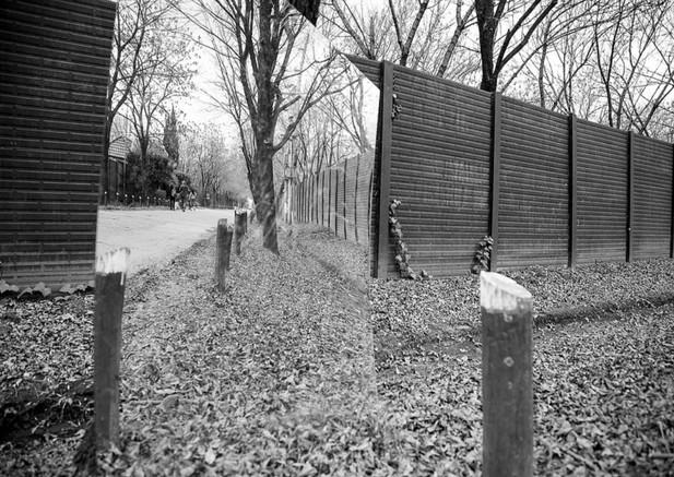 Andrea Alkalay Borders 1 Photography 50x