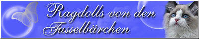 banner-Fusselbaerchen.jpg