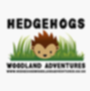 Hedgehog Woodland Adventures