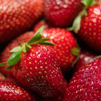 Monahan Farm Strawberries