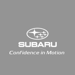 Cliente Uchi Subaru