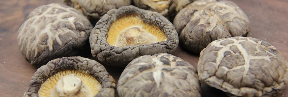 Dried Flower Mushroom 茶花菇