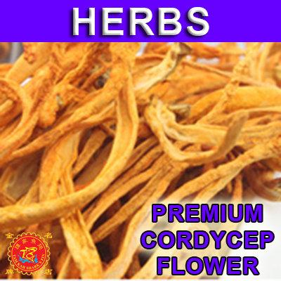 Premium Cordycep Flower 一级虫草花